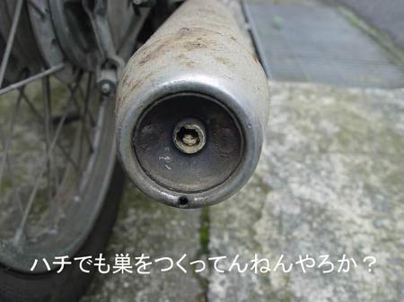 Dsc00576_2